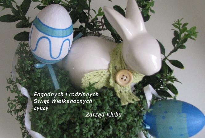 Kopia jajeczko 021