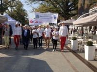 Pokaż album: Festyn Organizacji Pozarządowych